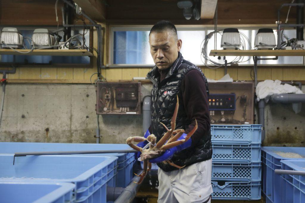 カニを見極める「京都丹後 海鮮の匠 魚政」の職人さん
